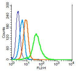 Human U937 cells probed with CDC123 Polyclonal Antibody, Unconjugated (bs-7781R) (green) at 1:100 for 30 minutes followed by a PE conjugated secondary antibody compared to unstained cells (blue), secondary only (light blue), and isotype control (orange).