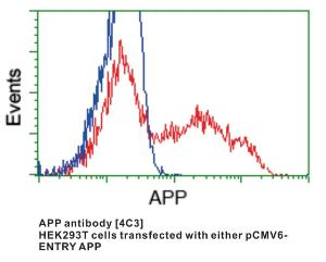 Anti-APP Mouse Monoclonal Antibody [clone: 4C3]
